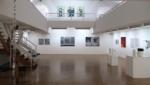 "Peter-Nowotny_2018_1 ""Meine große Schwester mit Ball"" Triptychon / Größe: 3 x (115 x 80 )cm / Acryl / Leinwand / Keilrahmen"